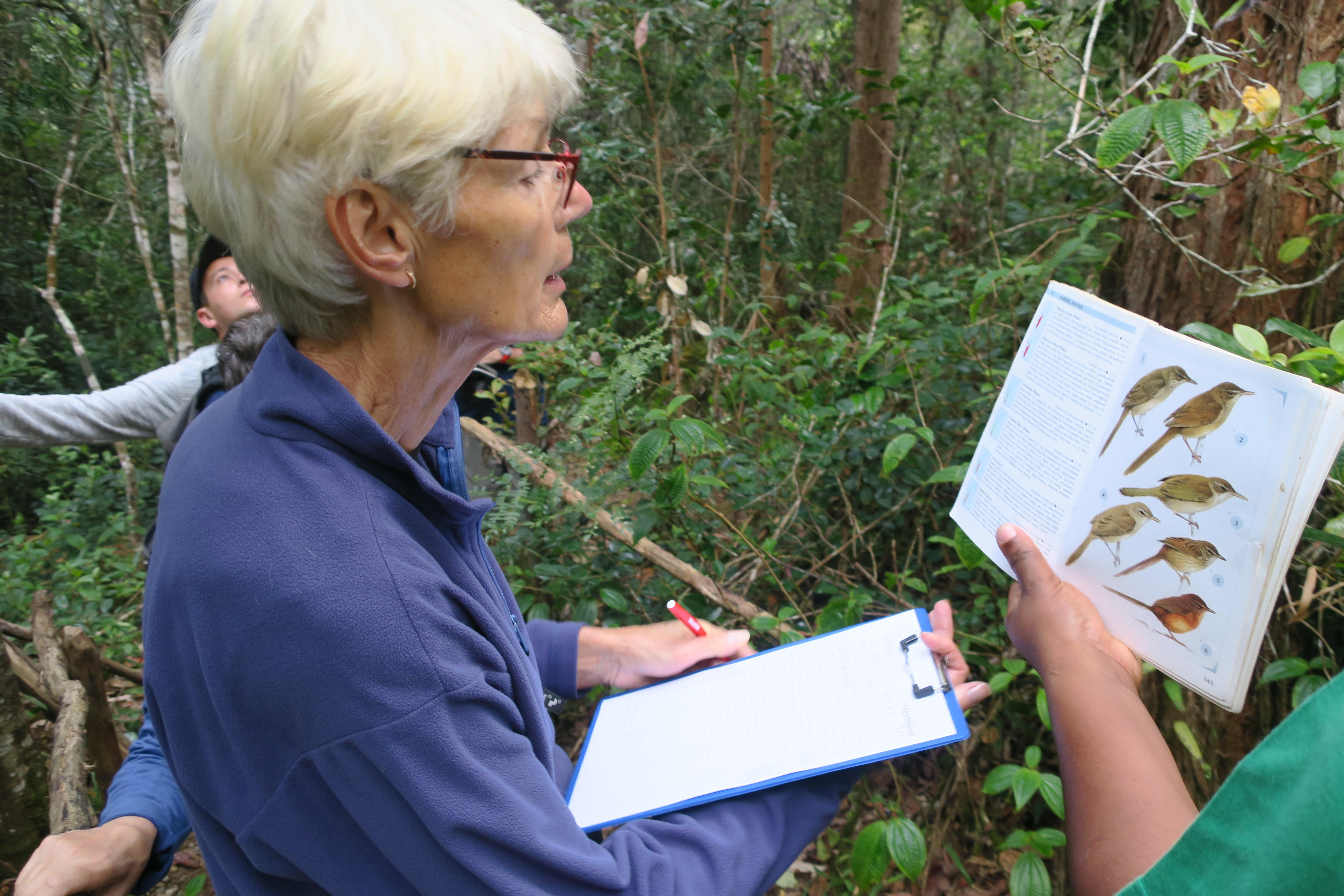 A Projects Abroad volunteer is pictured identifying a bird whilst on her rainforest conservation volunteering work in Madagascar.